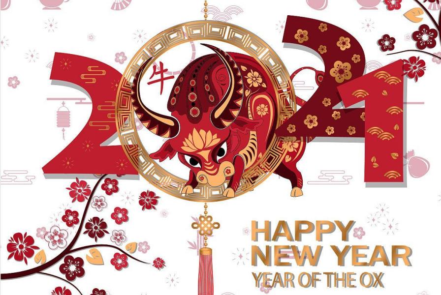 金牛贺岁 新年快乐    惠州市惠众诚包装制品有限公司